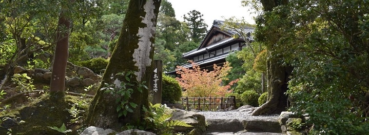 Japanese temple in forest