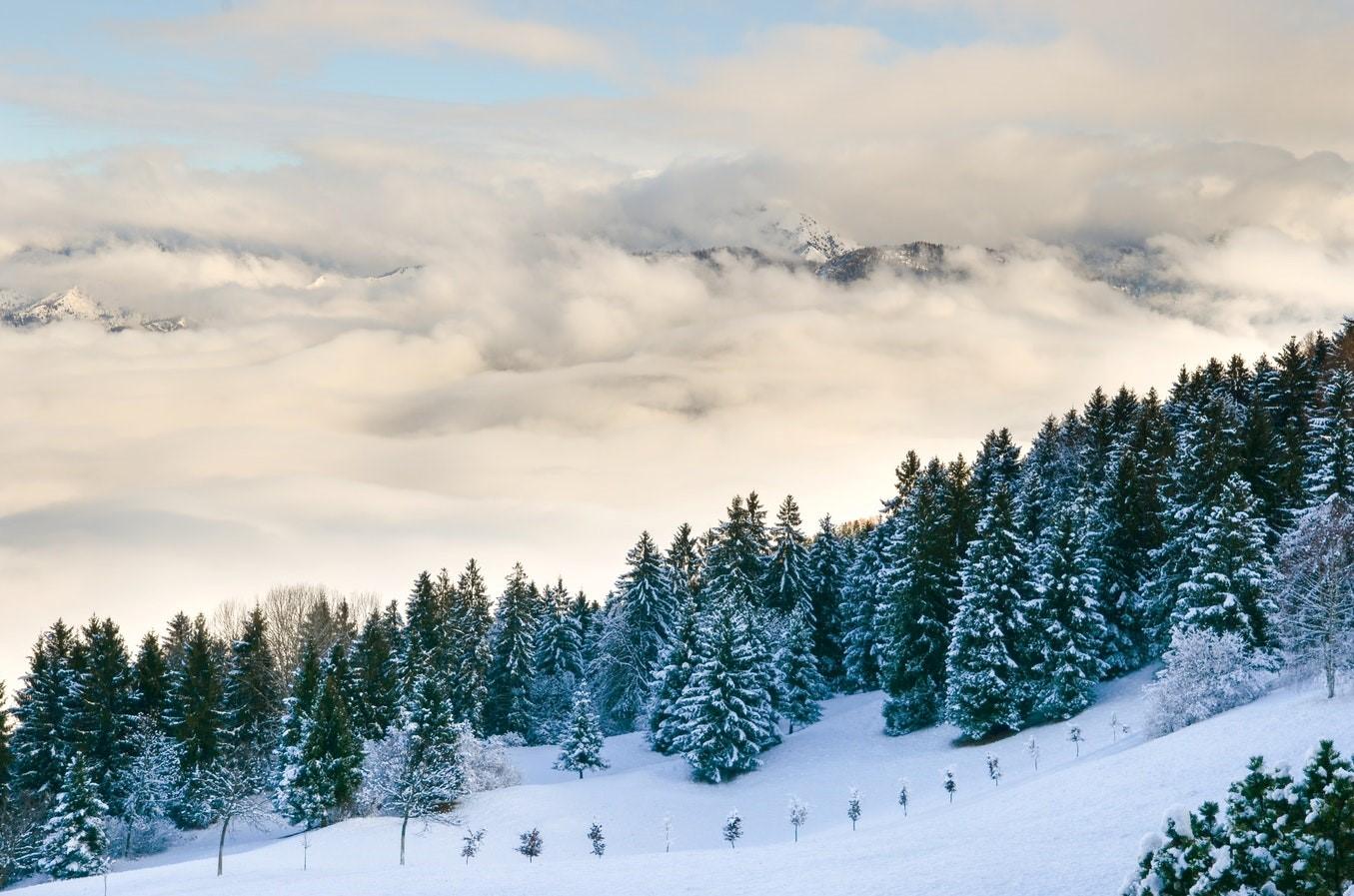 Ski Resort Cost Report 2017